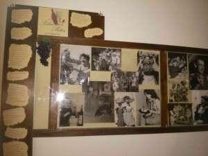 Frasi celebri e foto d epoca Enoteca Liber Pater