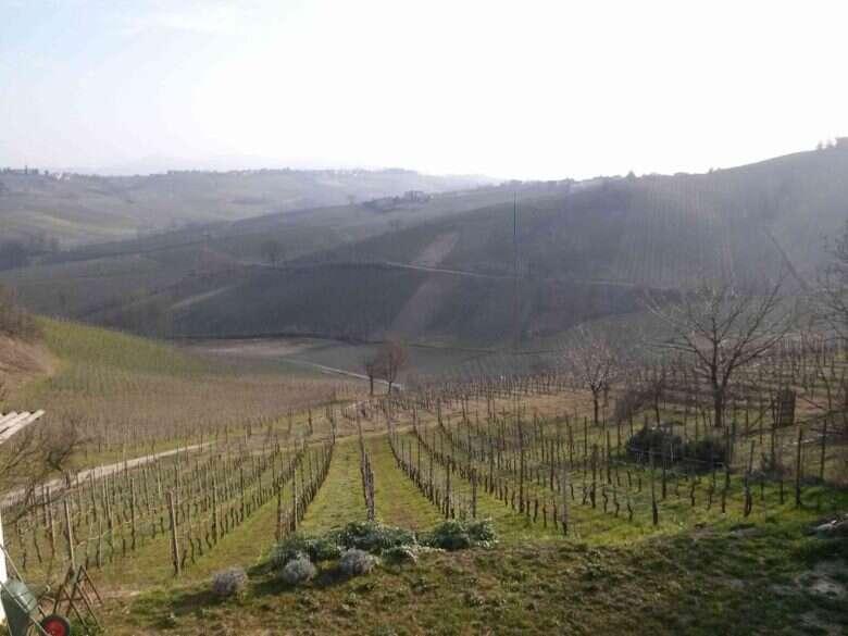 Marco Vercesi - Panorama Oltrepò Pavese da Cantina