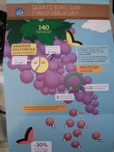 Quanto sono sani i vini di Vinnatur - 2015