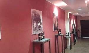 Cantine San Silvestro, foto e bottiglie - Novello Langhe