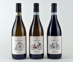 Linea Le Biciclette Cantine La Bollina