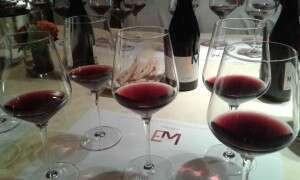 Degustazione Pinot Nero Edoardo Miroglio Wine Cellar