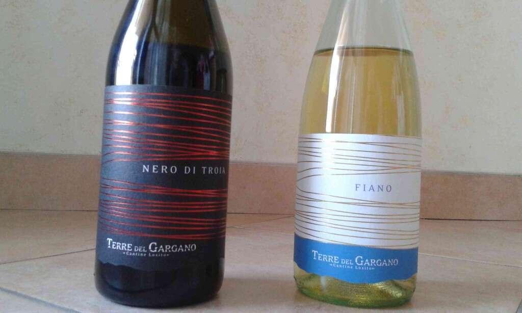 Degustazione Vini Cantine Losito Terre del Gargano