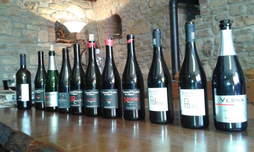 Degustazione Vini Stefano Milanesi