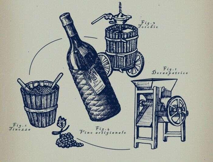 Procedimento per fare Vino naturale