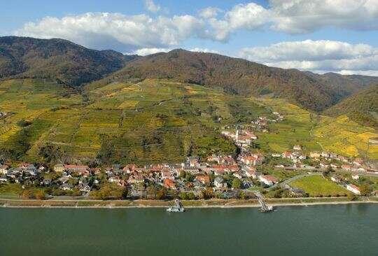 Wachau - Kamptal DAC - Riesling austriaco