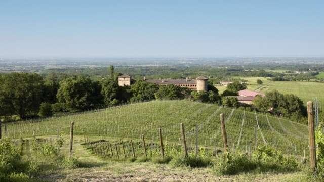 Cantina Luretta - Castello di Momeliano Colli Piacentini