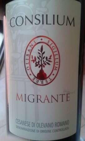 Cesanese di Olevano Romano Consilium Migrante