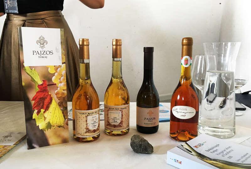 Tokaji di Pajzos - Grande Festa del Vino
