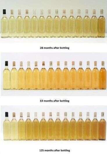 Conservazione delle Bottiglie - I Cambiamenti nel colore del Vino