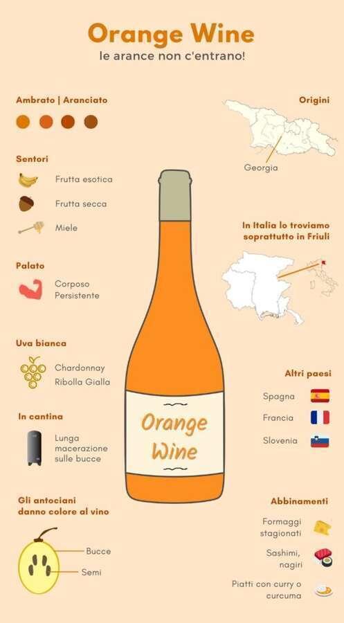 Orange Wine Infografica