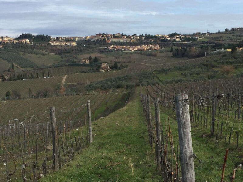 Panorama Panzano - La Conca d'Oro del Chianti Classico