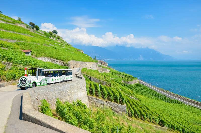 Treno turistico lungo i vigneti a terrazze sul lago di Ginevra Lac Leman