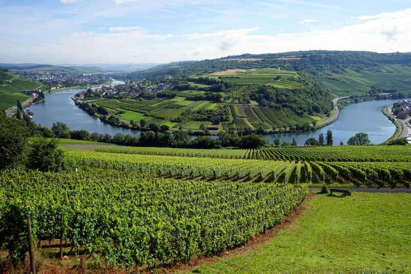 Vista Valle della Mosella in Germania