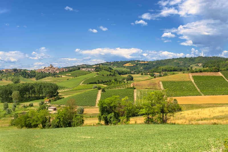 Paesaggio e Vigneti del Monferrato Astigiano