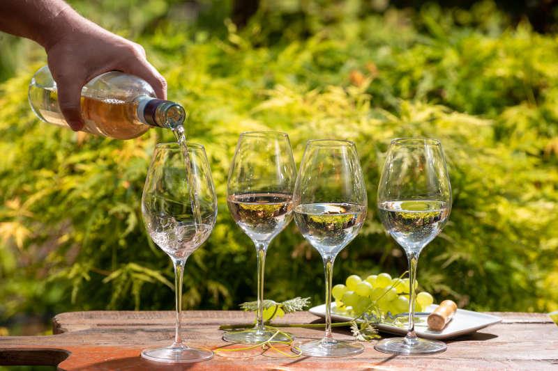 Degustazione Vini da Vendemmia Tardiva