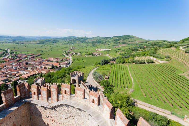 Panoramica Vigneti da Castello di Soave