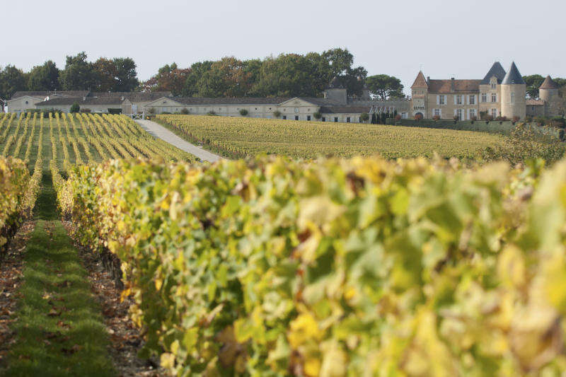 Vigneto e Chateau d'Yquem, Sauternes