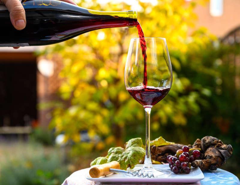 Degustazione Vino Novello